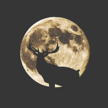 elksupermoon