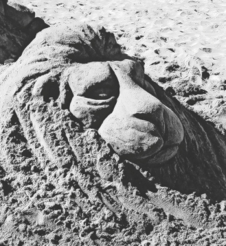 Lion_Sand Sculpture